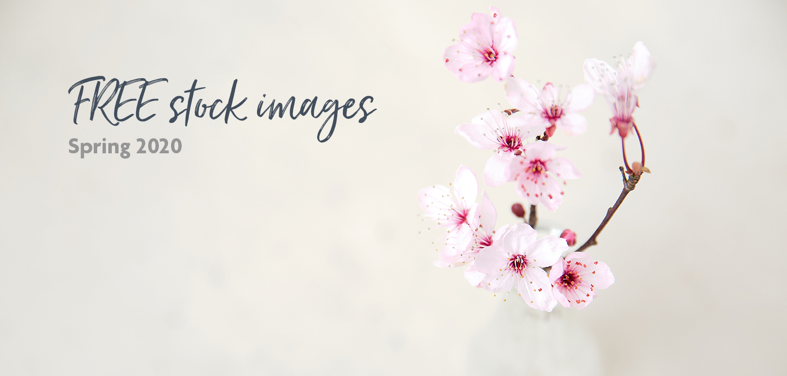 FREE Spring stock images